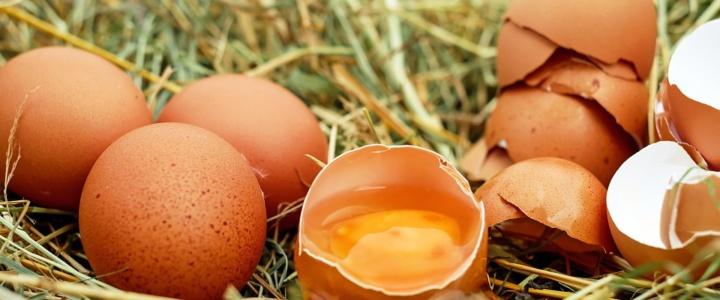 Eiersatz beim Kochen und Backen