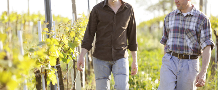 Interview Weingut Weiss: Histamin- und fruktosefreier Wein