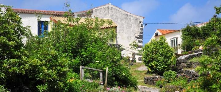Hauskauf und Auswandern auf die Azoren Teil 2