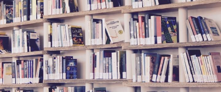 Gesundheits-Büchertalk mit Coach & Physikerin Ursula Rothamel
